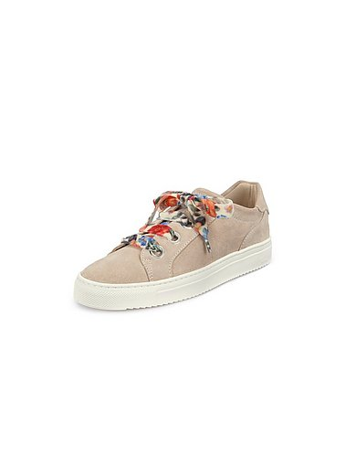 Sioux - Les sneakers Purvesia