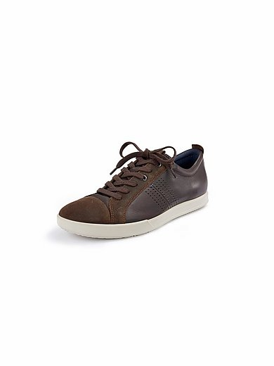 Ecco - Sneaker Collin