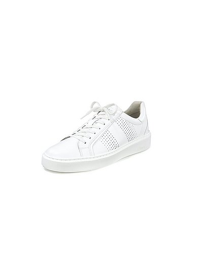 Sioux - Sneaker