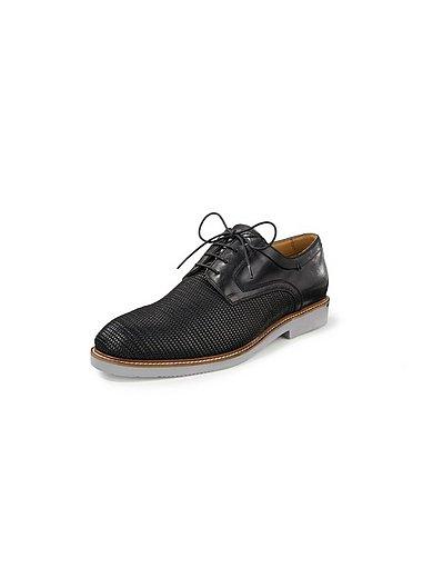 Salamander - Elegant lace-up shoes Harlino