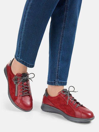 Ganter - Les sneakers Herieth